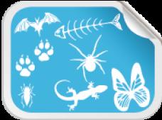 Blandede dyr