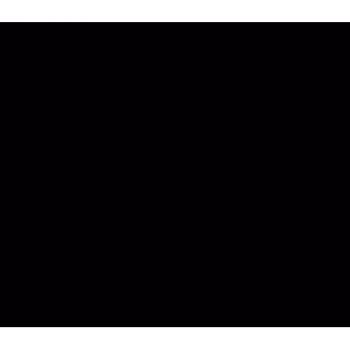 Hest 013