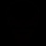 Skull 021