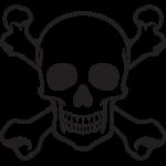 Skull 028