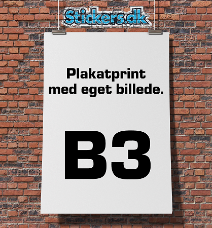 Plakatprint (35,3 x 50 cm)