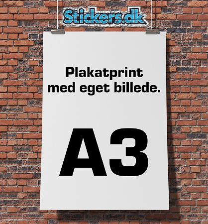 Plakatprint (29,7 x 42 cm)