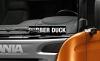 1536054412_showplate-rubber-duck