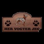australsk-cattledog