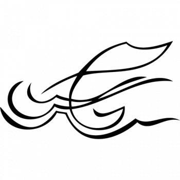 vignette020