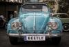 1554376126_beetle